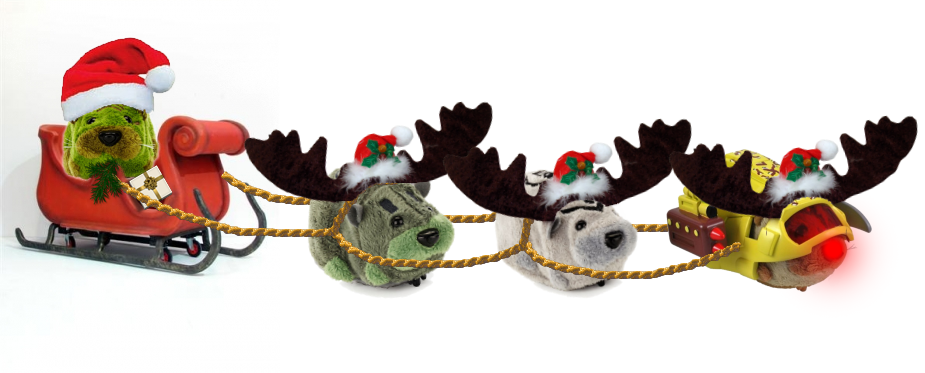 Kung Zhu Pets Dressed as Santa & His Reindeer (Including Rudolph)